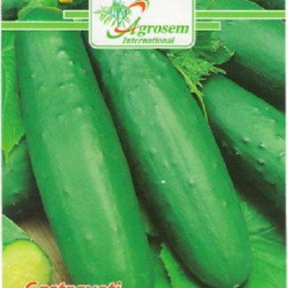 Seminte Castraveti Marketmore