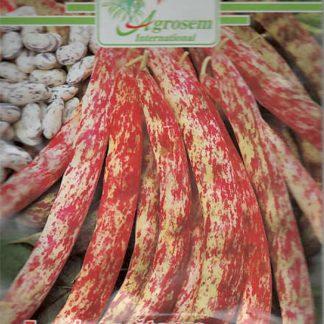 Seminte Fasole Oloaga Borlotto Red