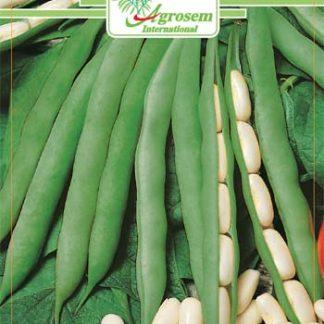 Seminte Fasole Oloaga Cannelino 100 G