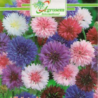 Seminte Flori Albastrele Mix