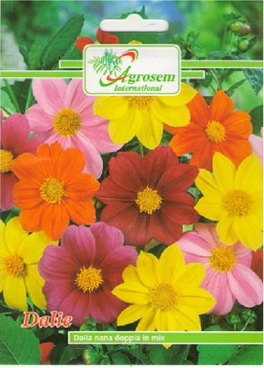 Seminte Flori Dalie Mix