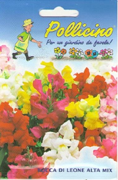 Seminte Flori Gura Leului Mix