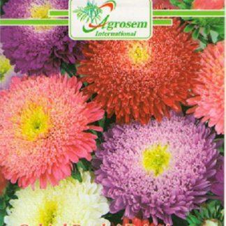 Seminte Flori Ochiul Boului Principessa Mix