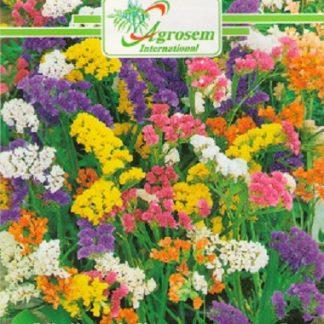 Seminte Flori Saraturica Mix