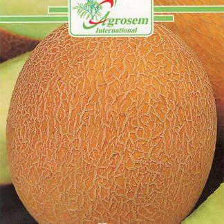 Seminte Pepene Galben Ananas D'amerique