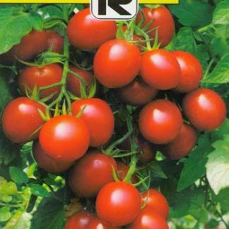 Seminte Tomate Red Cherry F1
