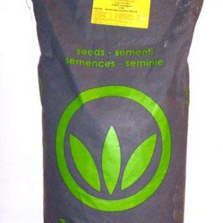 Seminte iarba de coasa 10 KG